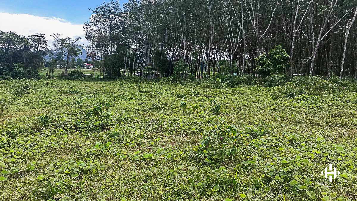 7 Rai land plot in Pasak