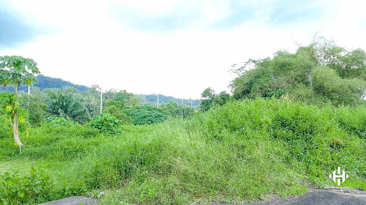 2 Land Plots in Paklok
