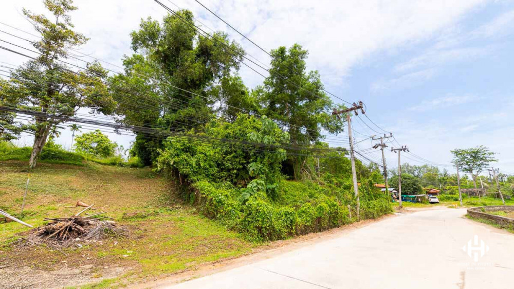 1 Rai Sloping Land in Layan